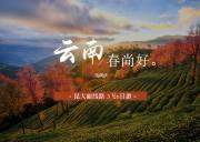 济南旅行社出发到云南丽江、大理、昆明 _ 3飞6日日游<昆明进,丽江出>不走回头路